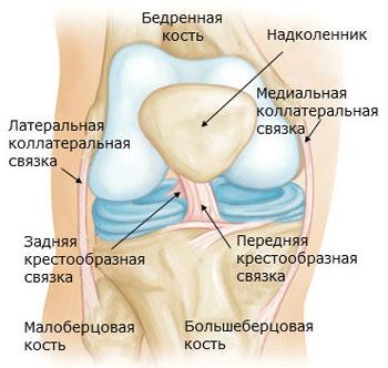 Повреждение внутренней коллатеральной связки коленного сустава тотальная замена тазобедренного сустава онемение