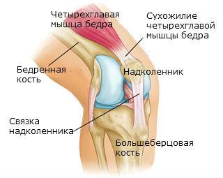 Растя ение или разрыв связак плечевого сустава сыпь на ногах и боль в суставах